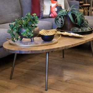 שולחן סלון אובלי פרנסיס