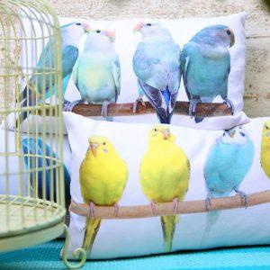 כריות ציפורים